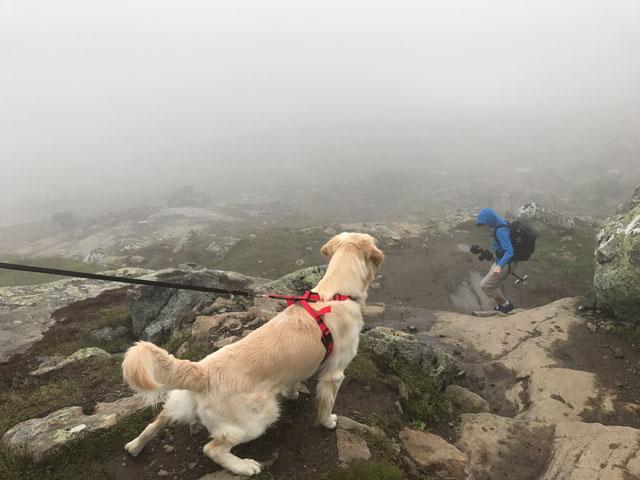Scooby övervakar Jespers väg ned.