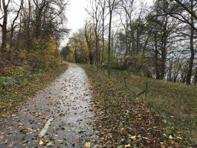 Cykelvägen längs Råbelövsjön.
