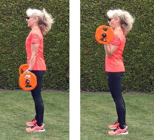 Bicepscurl med skivstång, start- och stoppläge